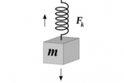 Định luật Hooke - lực đàn hồi của lò xo